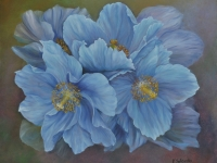 blue-poppies