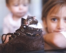 portrait-becca-hamster
