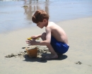 california-beach-david